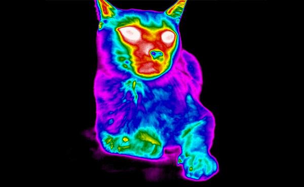 WPAC | Thermal Imaging